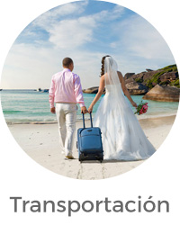 Romance Servicios transportación movil